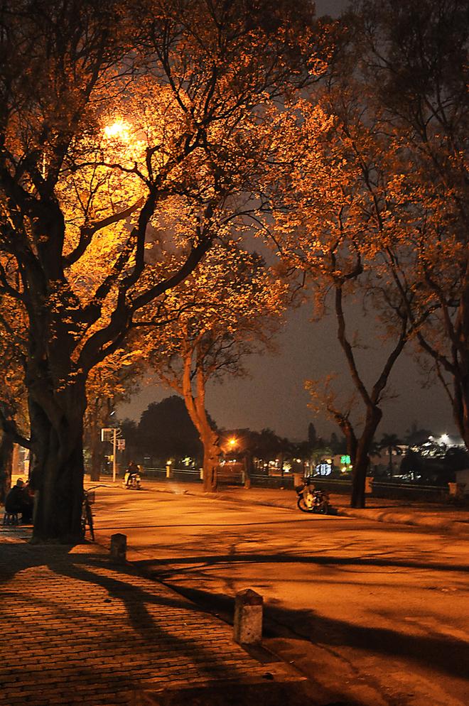 Peaceful And Quiet Hanoi At Night