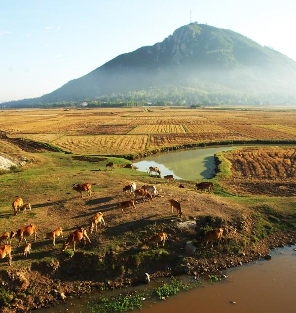 the beauty of Phu Yen